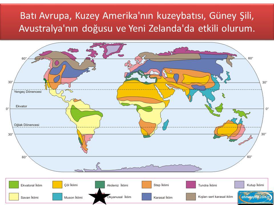 10 kuzey - 10 güney enlemleri arasında görülürüm. Özellikle Amazon ve Kongo havzaları, Malezya, Filipinler ve Papua Yeni Gine benden sorulur.