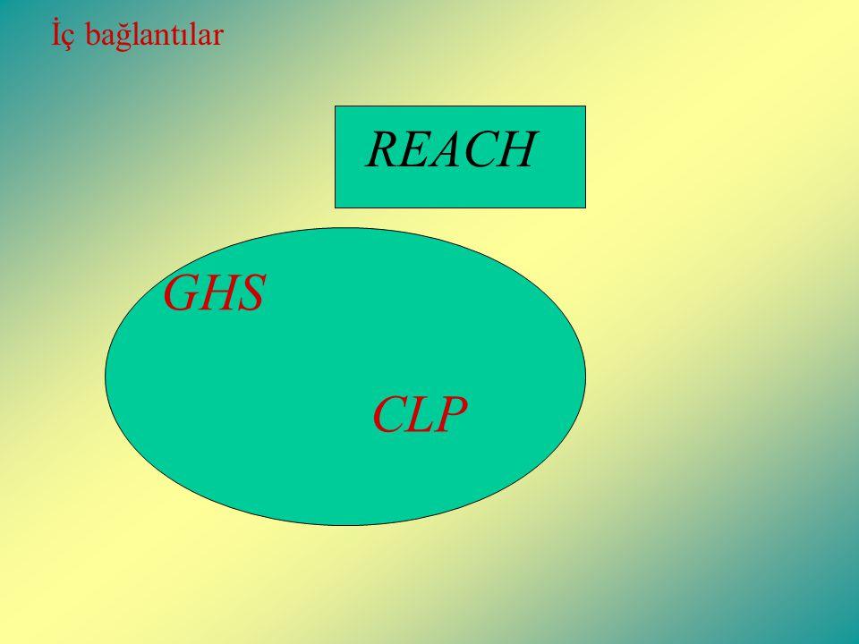 REACH GHS CLP İç bağlantılar