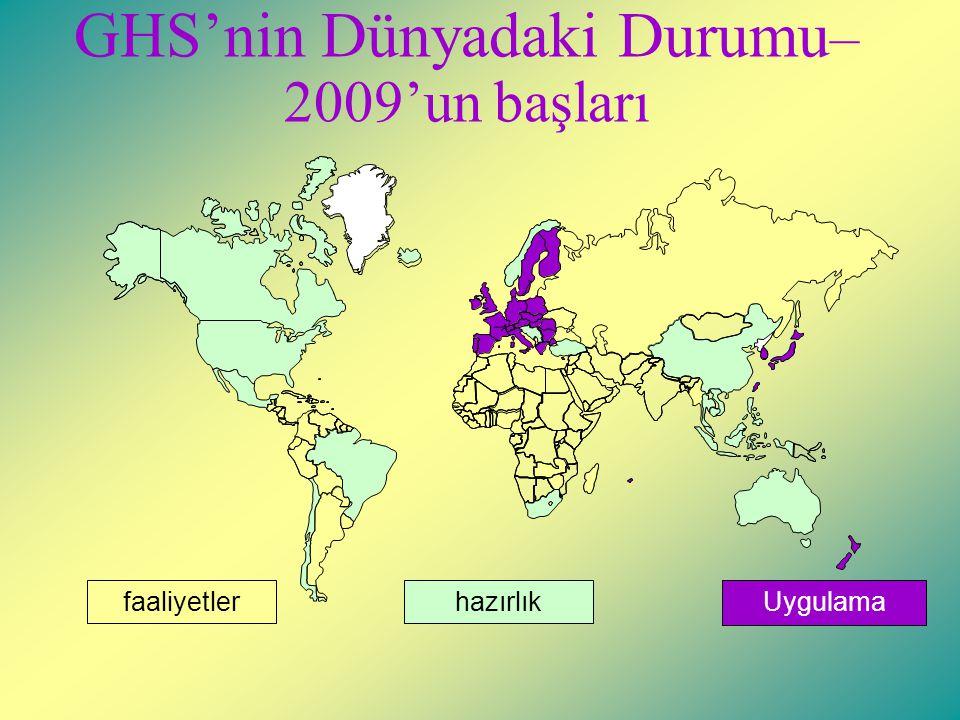 GHS'nin Dünyadaki Durumu – 2009'un başları hazırlıkUygulamafaaliyetler