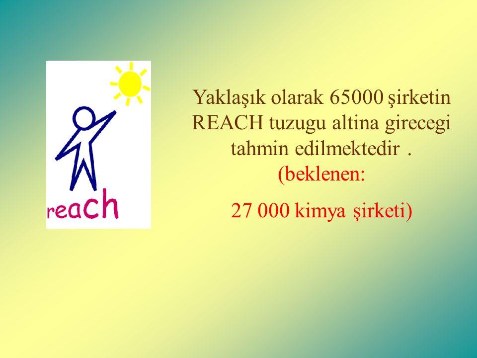 Yaklaşık olarak 65000 şirketin REACH tuzugu altina girecegi tahmin edilmektedir.