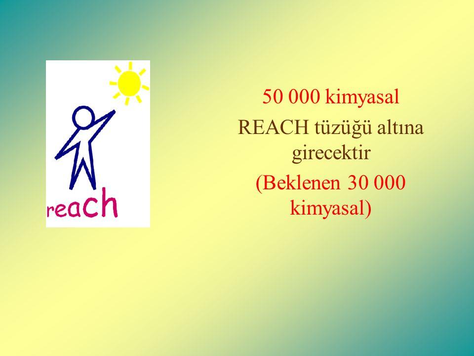 50 000 kimyasal REACH tüzüğü altına girecektir (Beklenen 30 000 kimyasal)