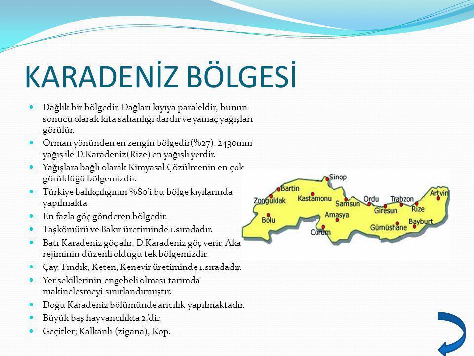 KARADENİZ BÖLGESİ Dağlık bir bölgedir.