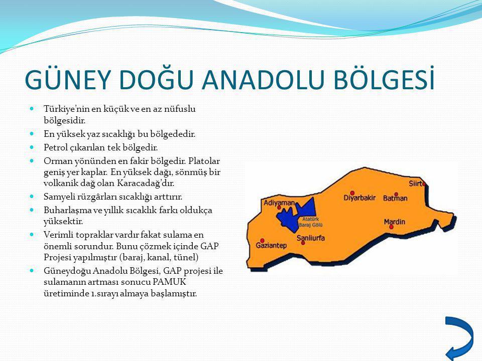 GÜNEY DOĞU ANADOLU BÖLGESİ Türkiye'nin en küçük ve en az nüfuslu bölgesidir. En yüksek yaz sıcaklığı bu bölgededir. Petrol çıkarılan tek bölgedir. Orm