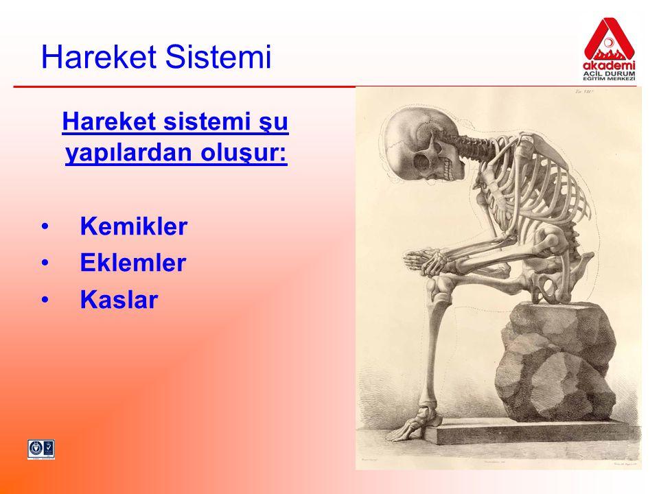 Hareket Sistemi Hareket sistemi şu yapılardan oluşur: Kemikler Eklemler Kaslar