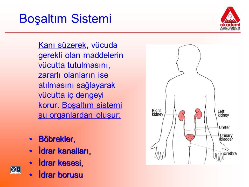 Boşaltım Sistemi Kanı süzerek, vücuda gerekli olan maddelerin vücutta tutulmasını, zararlı olanların ise atılmasını sağlayarak vücutta iç dengeyi koru