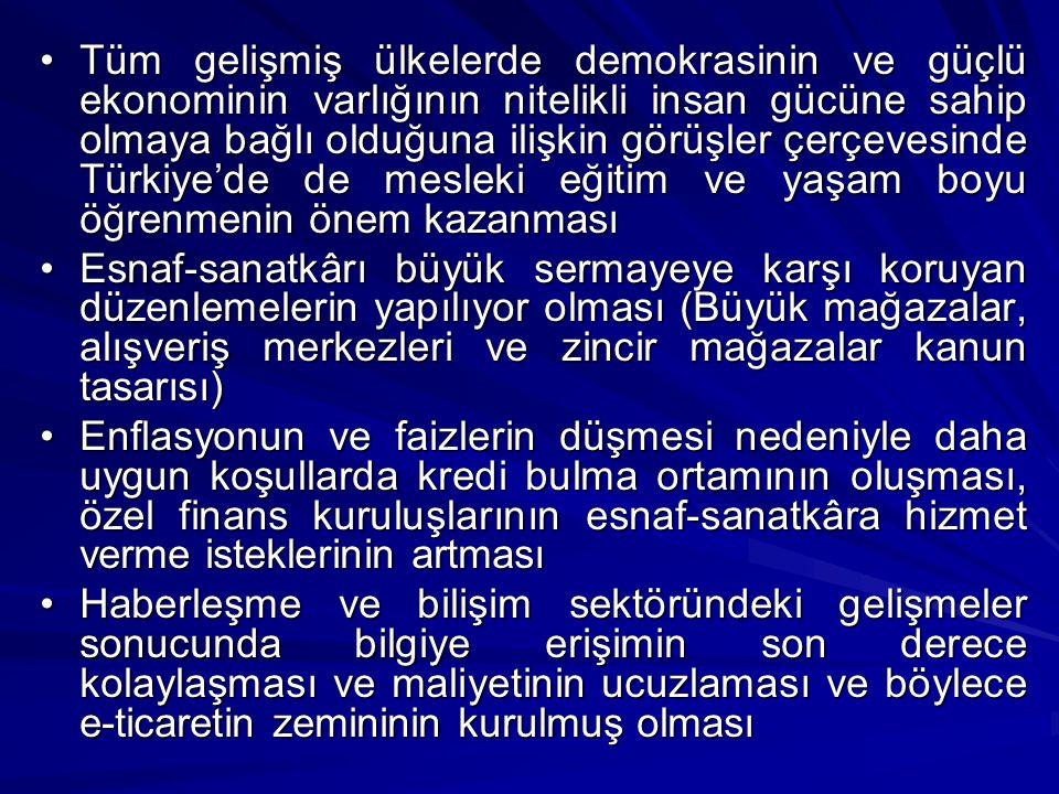 Tüm gelişmiş ülkelerde demokrasinin ve güçlü ekonominin varlığının nitelikli insan gücüne sahip olmaya bağlı olduğuna ilişkin görüşler çerçevesinde Türkiye'de de mesleki eğitim ve yaşam boyu öğrenmenin önem kazanmasıTüm gelişmiş ülkelerde demokrasinin ve güçlü ekonominin varlığının nitelikli insan gücüne sahip olmaya bağlı olduğuna ilişkin görüşler çerçevesinde Türkiye'de de mesleki eğitim ve yaşam boyu öğrenmenin önem kazanması Esnaf-sanatkârı büyük sermayeye karşı koruyan düzenlemelerin yapılıyor olması (Büyük mağazalar, alışveriş merkezleri ve zincir mağazalar kanun tasarısı)Esnaf-sanatkârı büyük sermayeye karşı koruyan düzenlemelerin yapılıyor olması (Büyük mağazalar, alışveriş merkezleri ve zincir mağazalar kanun tasarısı) Enflasyonun ve faizlerin düşmesi nedeniyle daha uygun koşullarda kredi bulma ortamının oluşması, özel finans kuruluşlarının esnaf-sanatkâra hizmet verme isteklerinin artmasıEnflasyonun ve faizlerin düşmesi nedeniyle daha uygun koşullarda kredi bulma ortamının oluşması, özel finans kuruluşlarının esnaf-sanatkâra hizmet verme isteklerinin artması Haberleşme ve bilişim sektöründeki gelişmeler sonucunda bilgiye erişimin son derece kolaylaşması ve maliyetinin ucuzlaması ve böylece e-ticaretin zemininin kurulmuş olmasıHaberleşme ve bilişim sektöründeki gelişmeler sonucunda bilgiye erişimin son derece kolaylaşması ve maliyetinin ucuzlaması ve böylece e-ticaretin zemininin kurulmuş olması