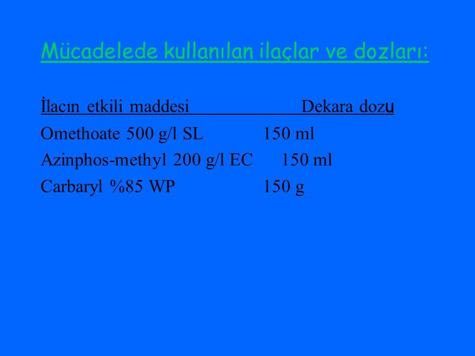Mücadelede kullanılan ilaçlar ve dozları: İlacın etkili maddesi Dekara doz u Omethoate 500 g/l SL 150 ml Azinphos-methyl 200 g/l EC 150 ml Carbaryl %85 WP 150 g