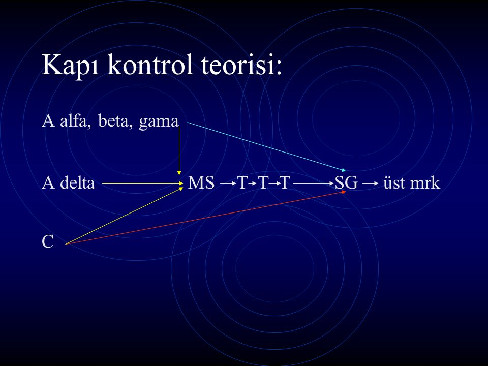 Kapı kontrol teorisi: A alfa, beta, gama A deltaMST T TSGüst mrk C