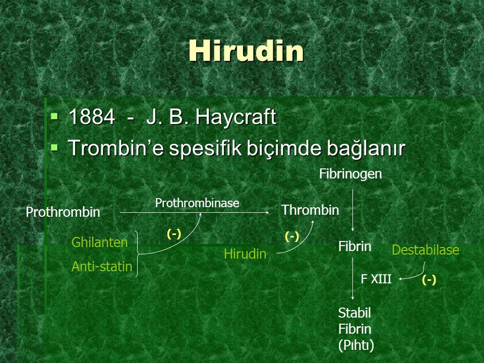 Hirudin  1884 - J. B. Haycraft  Trombin'e spesifik biçimde bağlanır Prothrombinase Prothrombin Thrombin Fibrinogen Fibrin Hirudin (-) Stabil Fibrin