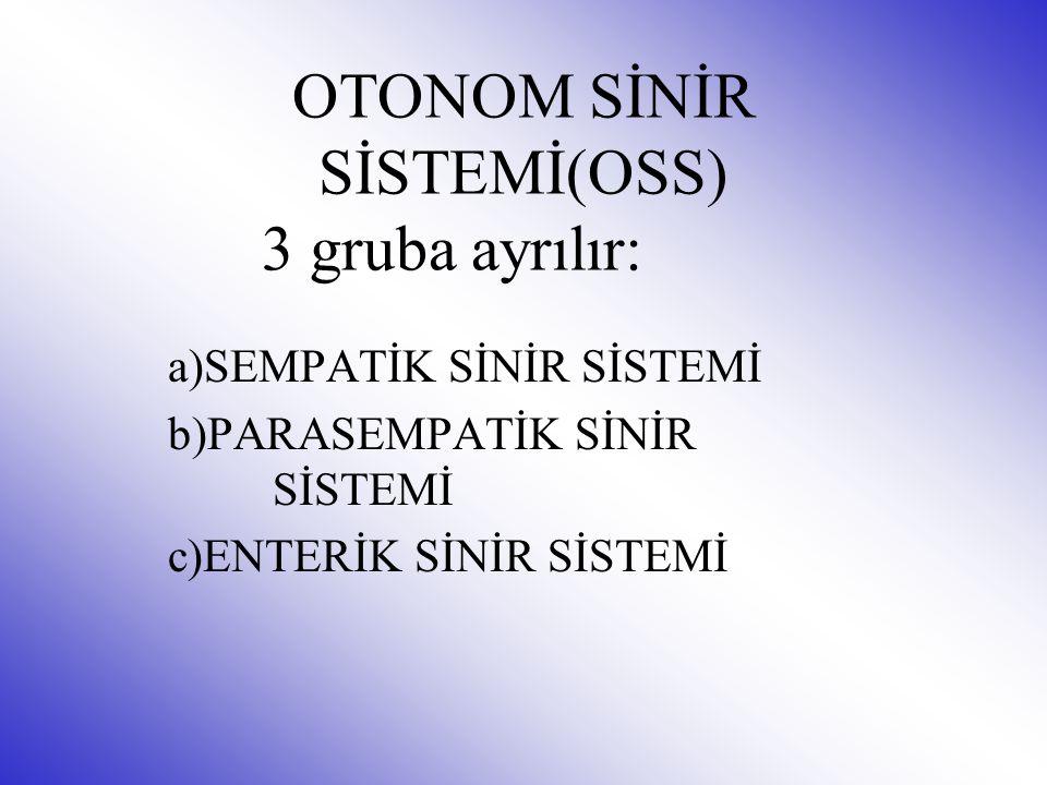 OTONOM SİNİR SİSTEMİ(OSS) 3 gruba ayrılır: a)SEMPATİK SİNİR SİSTEMİ b)PARASEMPATİK SİNİR SİSTEMİ c)ENTERİK SİNİR SİSTEMİ