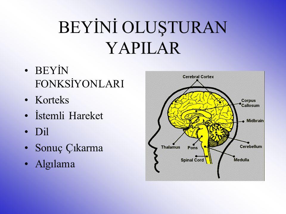 BEYİN HASTALIKLARI Beyin İltihabı Beyin kanaması Beyin travması Beyin sarsıntısı Beyin tümörleri