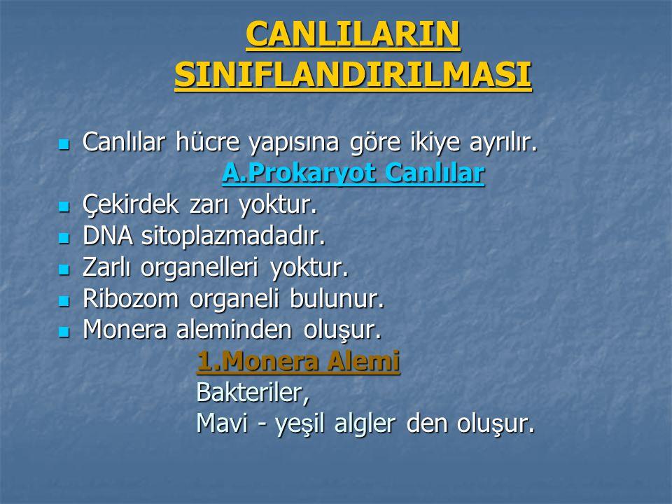 CANLILARINSINIFLANDIRILMASI Canlılar hücre yapısına göre ikiye ayrılır. Canlılar hücre yapısına göre ikiye ayrılır. A.Prokaryot Canlılar Çekirdek zarı