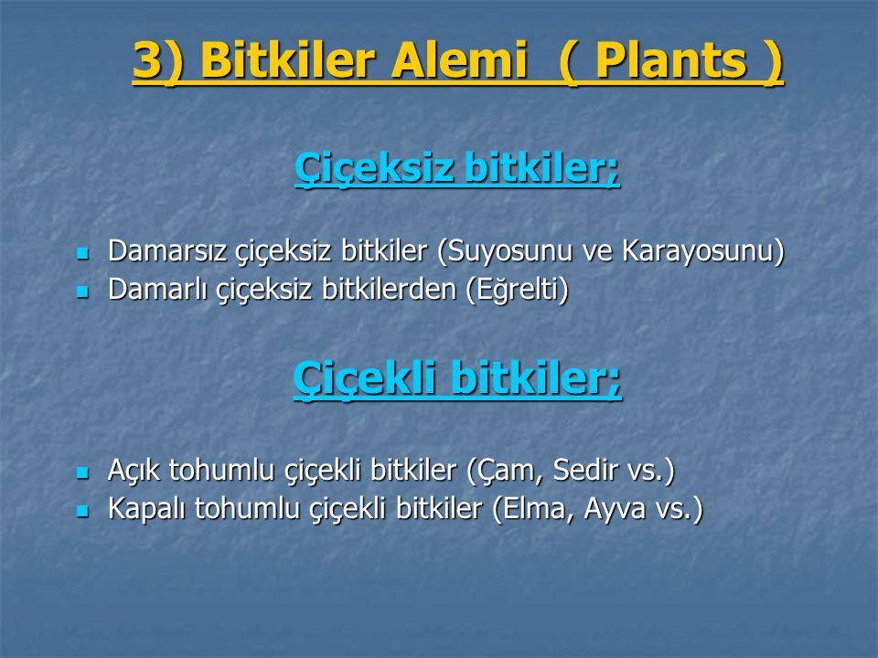 3) Bitkiler Alemi ( Plants ) Çiçeksiz bitkiler; Damarsız çiçeksiz bitkiler (Suyosunu ve Karayosunu) Damarsız çiçeksiz bitkiler (Suyosunu ve Karayosunu