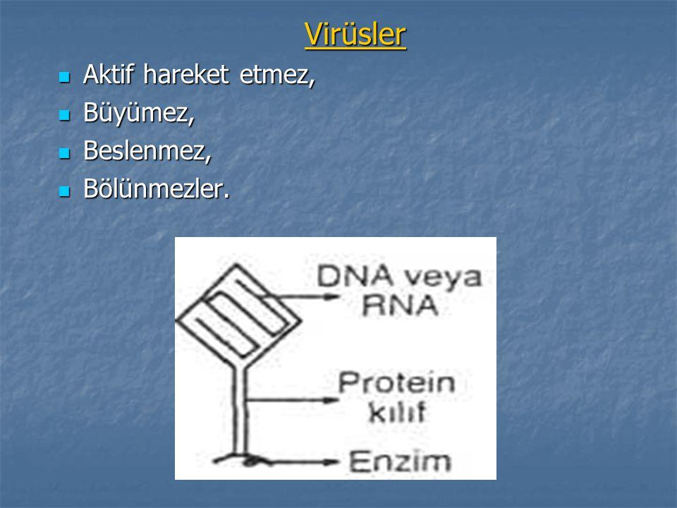 Virüsler Aktif hareket etmez, Aktif hareket etmez, Büyümez, Büyümez, Beslenmez, Beslenmez, Bölünmezler. Bölünmezler.