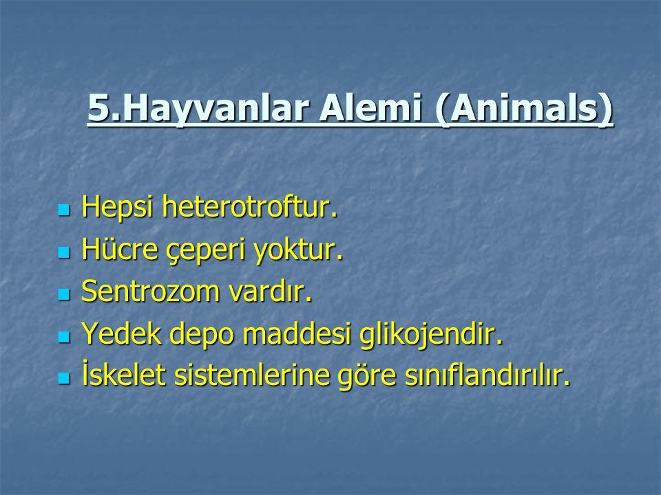 5.Hayvanlar Alemi (Animals) Hepsi heterotroftur. Hepsi heterotroftur. Hücre çeperi yoktur. Hücre çeperi yoktur. Sentrozom vardır. Sentrozom vardır. Ye