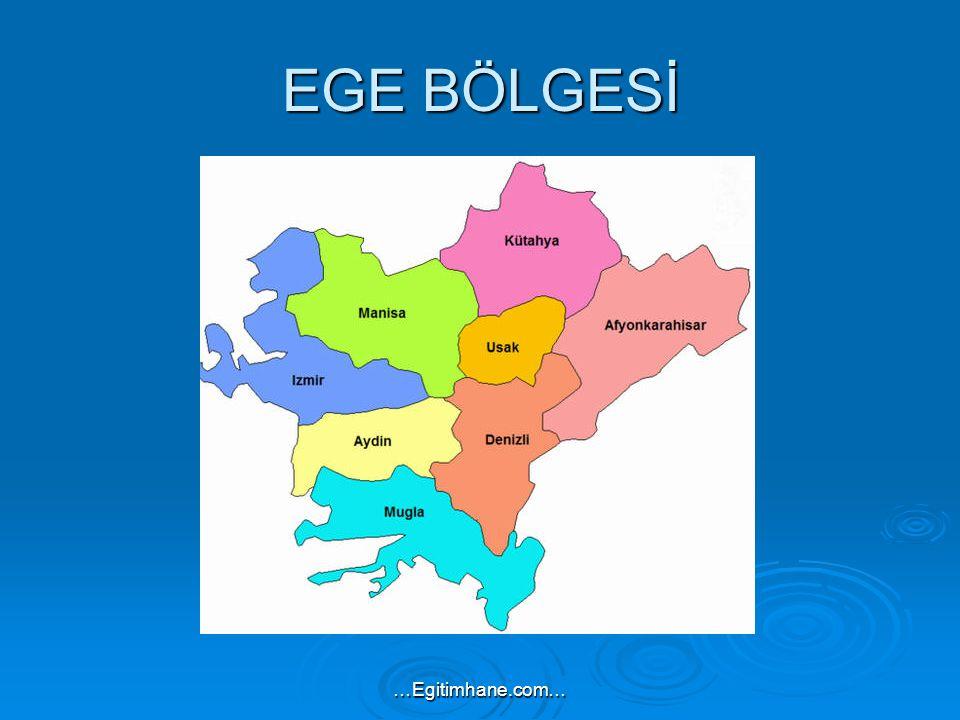 EGE BÖLGESİ …Egitimhane.com…