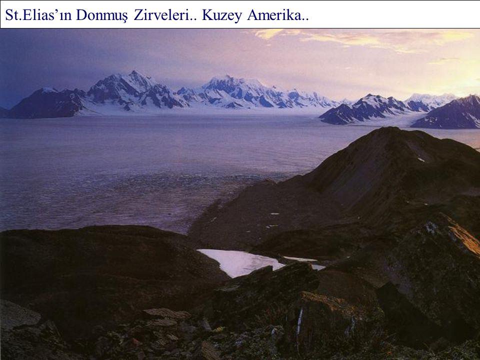 Mckinley Dağı.. Denali Ulusal Parkı.. Alaska..