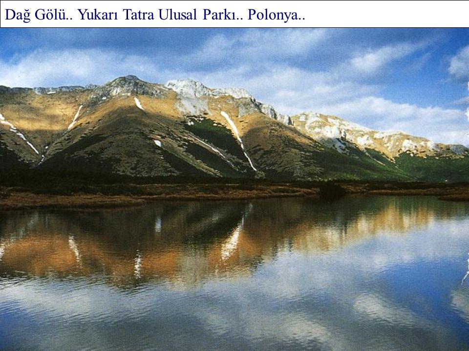St.Elias'ın Donmuş Zirveleri.. Kuzey Amerika..