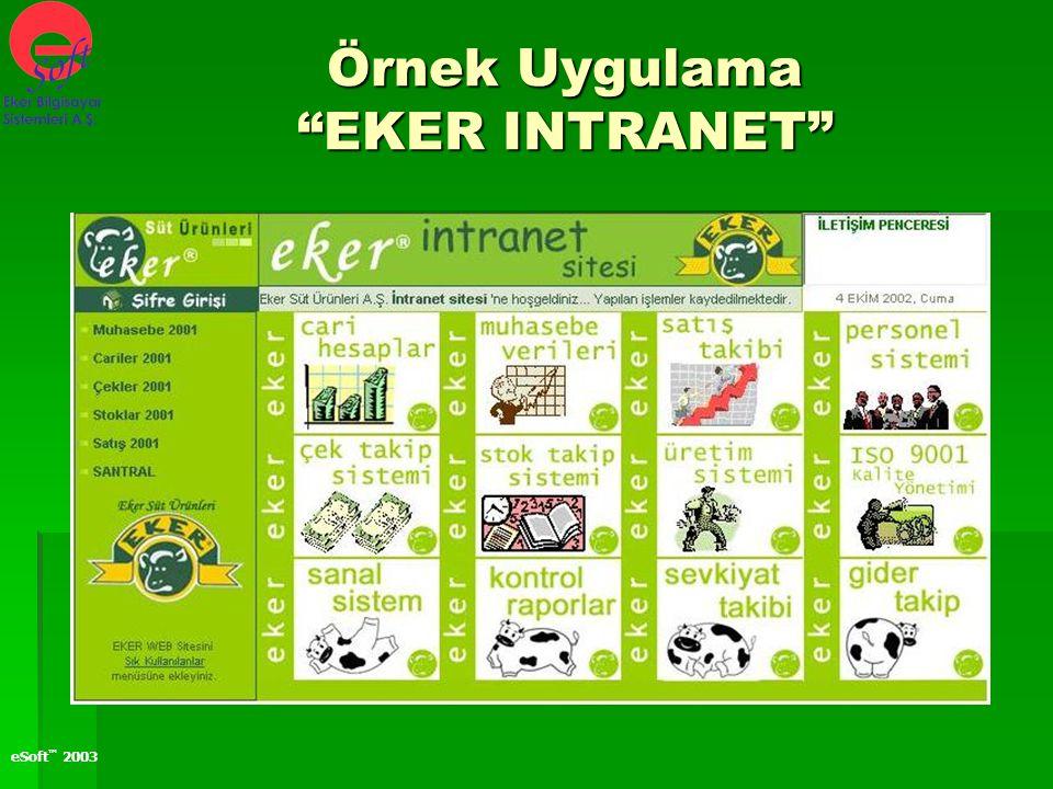 "eSoft ™ 2003 Örnek Uygulama ""EKER INTRANET"""
