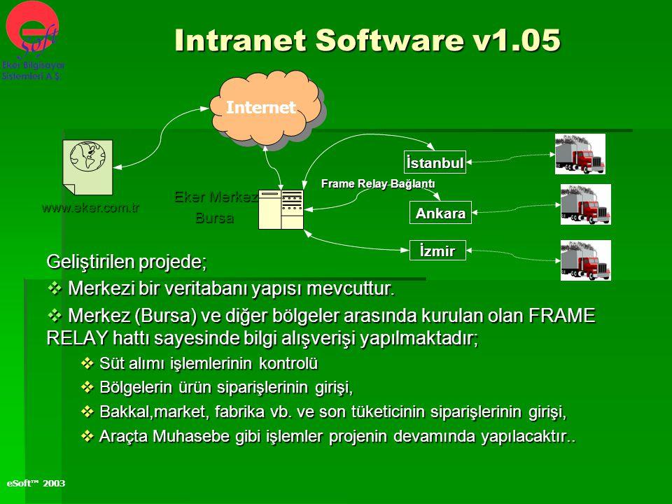 eSoft™ 2003 Intranet Software v1.05 Geliştirilen projede;  Merkezi bir veritabanı yapısı mevcuttur.  Merkez (Bursa) ve diğer bölgeler arasında kurul