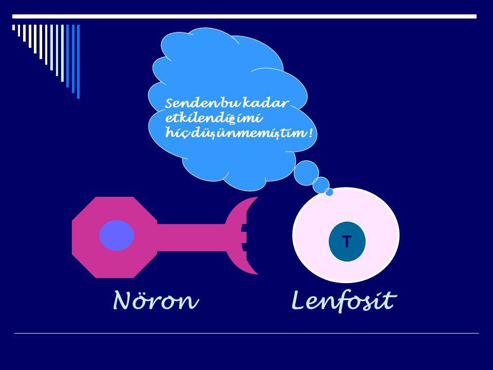 LenfositNöron T Senden bu kadar etkilendi ğ imi hiç dü ş ünmemi ş tim !