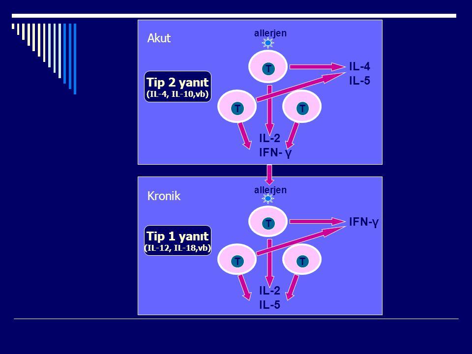 T TT IL-2 IFN- γ IL-4 IL-5 allerjen Tip 2 yanıt (IL-4, IL-10,vb) T TT IL-2 IL-5 IFN-γ allerjen Tip 1 yanıt (IL-12, IL-18,vb) Akut Kronik