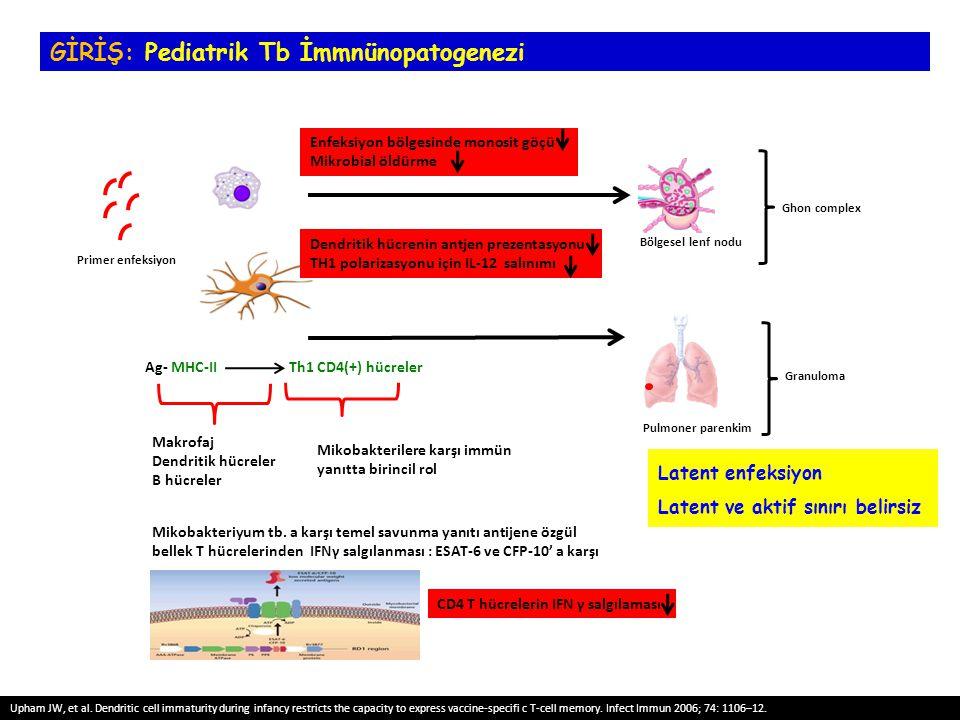 Latent enfeksiyon Latent ve aktif sınırı belirsiz Primer enfeksiyon Bölgesel lenf nodu Pulmoner parenkim Ghon complex Granuloma Ag- MHC-II Th1 CD4(+)