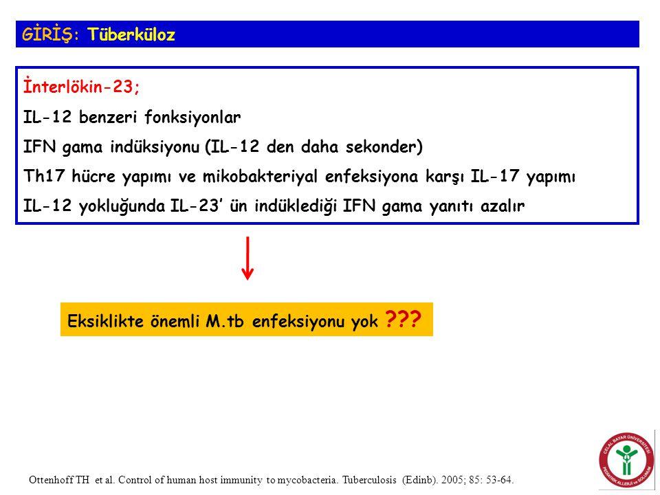 İnterlökin-23; IL-12 benzeri fonksiyonlar IFN gama indüksiyonu (IL-12 den daha sekonder) Th17 hücre yapımı ve mikobakteriyal enfeksiyona karşı IL-17 y