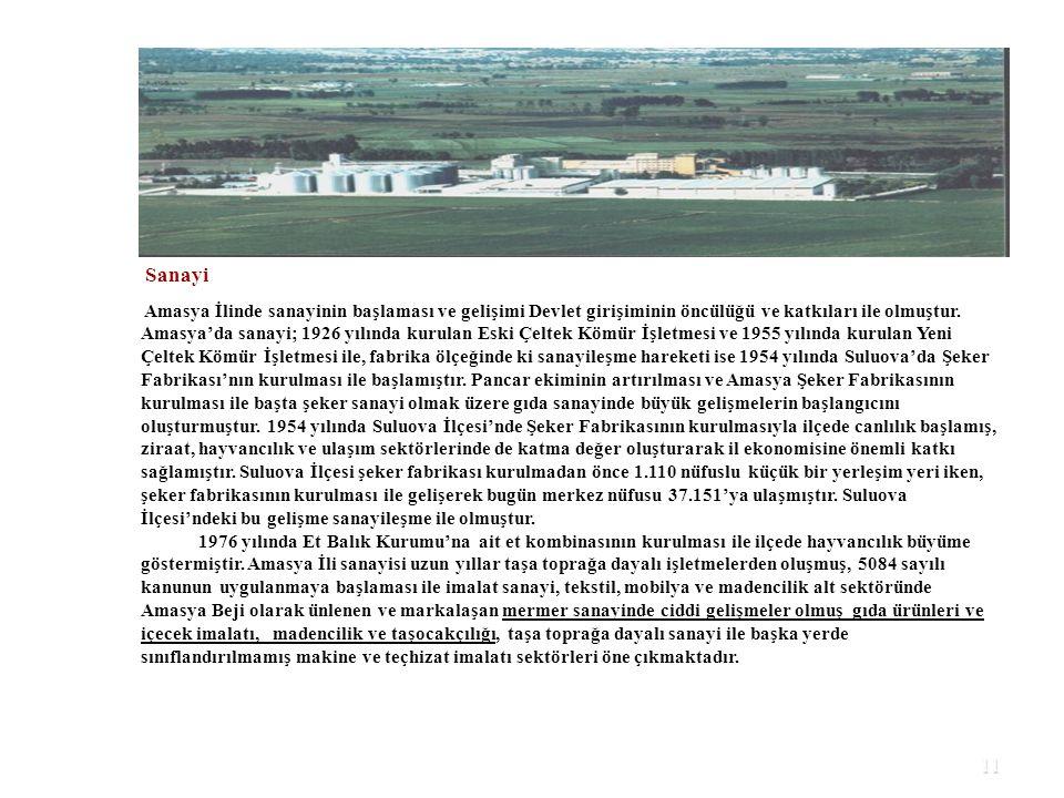 11 Sanayi Amasya İlinde sanayinin başlaması ve gelişimi Devlet girişiminin öncülüğü ve katkıları ile olmuştur. Amasya'da sanayi; 1926 yılında kurulan