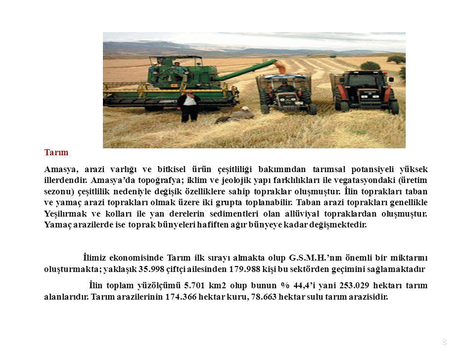 8 Tarım Amasya, arazi varlığı ve bitkisel ürün çeşitliliği bakımından tarımsal potansiyeli yüksek illerdendir. Amasya'da topoğrafya; iklim ve jeolojik