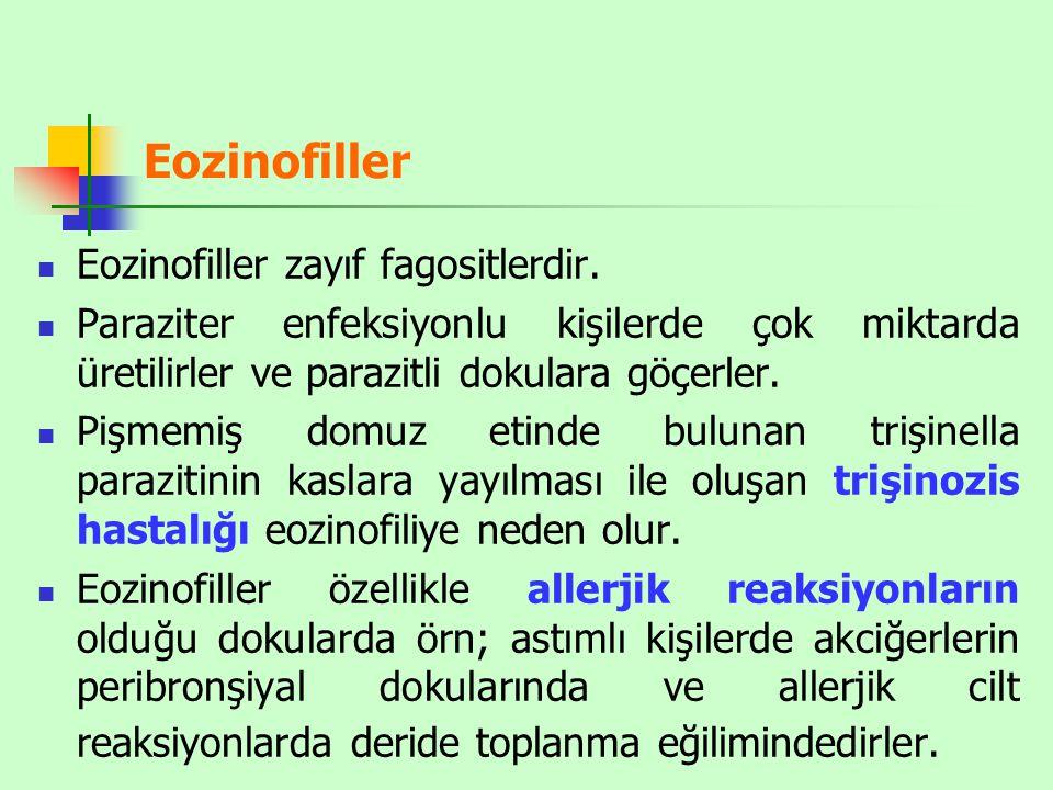Eozinofiller Eozinofiller zayıf fagositlerdir.