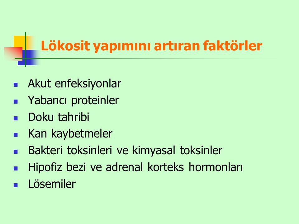Lökosit yapımını artıran faktörler Akut enfeksiyonlar Yabancı proteinler Doku tahribi Kan kaybetmeler Bakteri toksinleri ve kimyasal toksinler Hipofiz bezi ve adrenal korteks hormonları Lösemiler