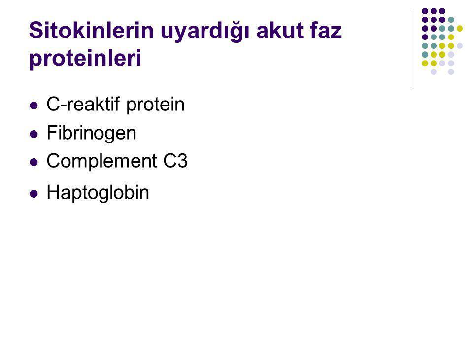 Sitokinlerin uyardığı akut faz proteinleri C-reaktif protein Fibrinogen Complement C3 Haptoglobin