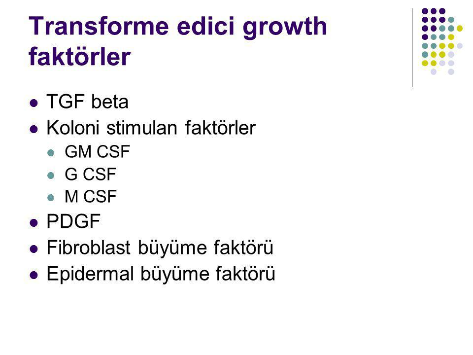 Transforme edici growth faktörler TGF beta Koloni stimulan faktörler GM CSF G CSF M CSF PDGF Fibroblast büyüme faktörü Epidermal büyüme faktörü