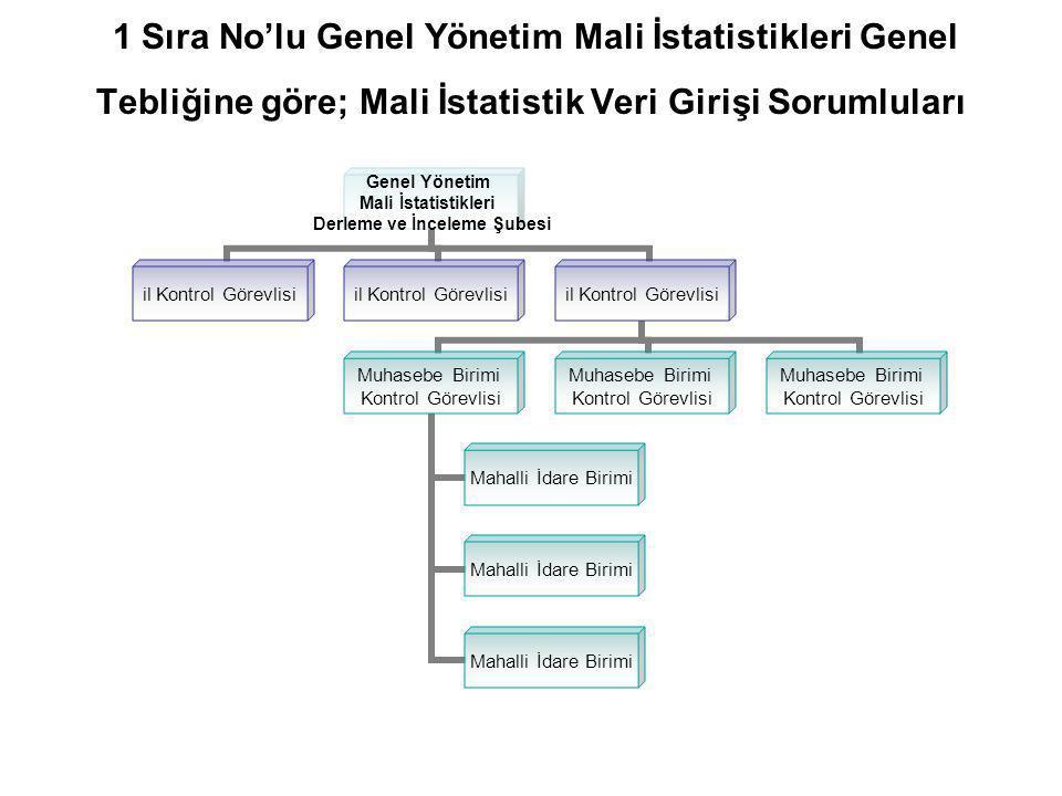 1 Sıra No'lu Genel Yönetim Mali İstatistikleri Genel Tebliğine göre; Mali İstatistik Veri Girişi Sorumluları Genel Yönetim Mali İstatistikleri Derleme