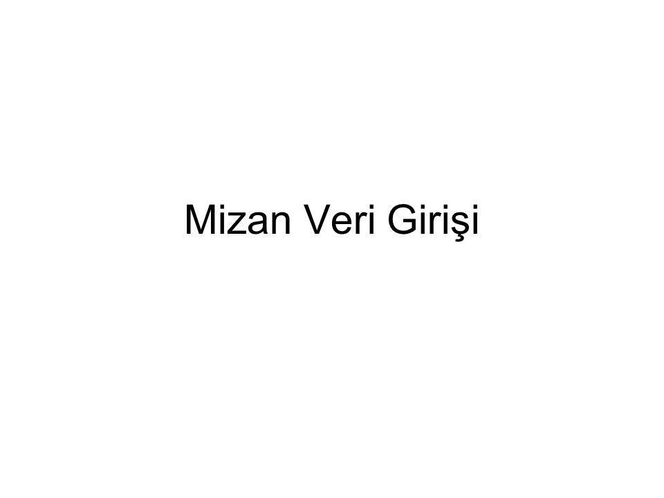 Mizan Veri Girişi
