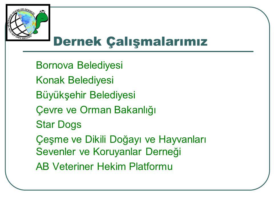 Dernek Çalışmalarımız Bornova Belediyesi Konak Belediyesi Büyükşehir Belediyesi Çevre ve Orman Bakanlığı Star Dogs Çeşme ve Dikili Doğayı ve Hayvanlar