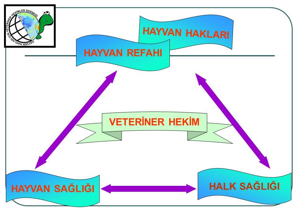 Sağlıklı çevre HALK SAĞLIĞI HAYVAN SAĞLIĞI HAYVAN HAKLARI Sağlıklı üretim Sağlıklı insan Sağlıklı hayvan