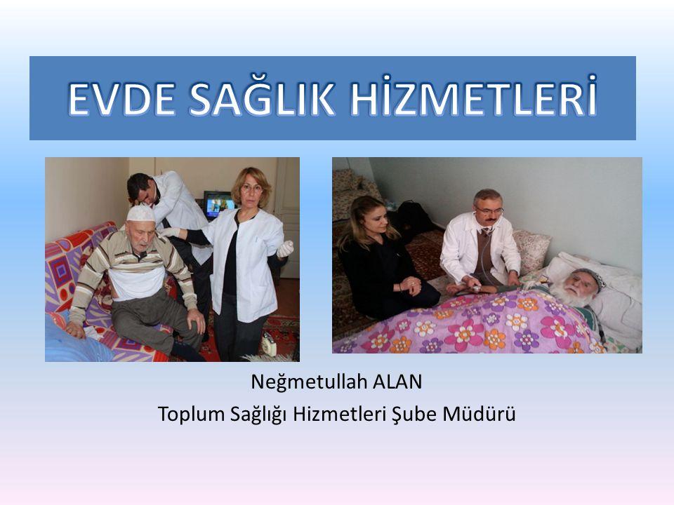 Neğmetullah ALAN Toplum Sağlığı Hizmetleri Şube Müdürü