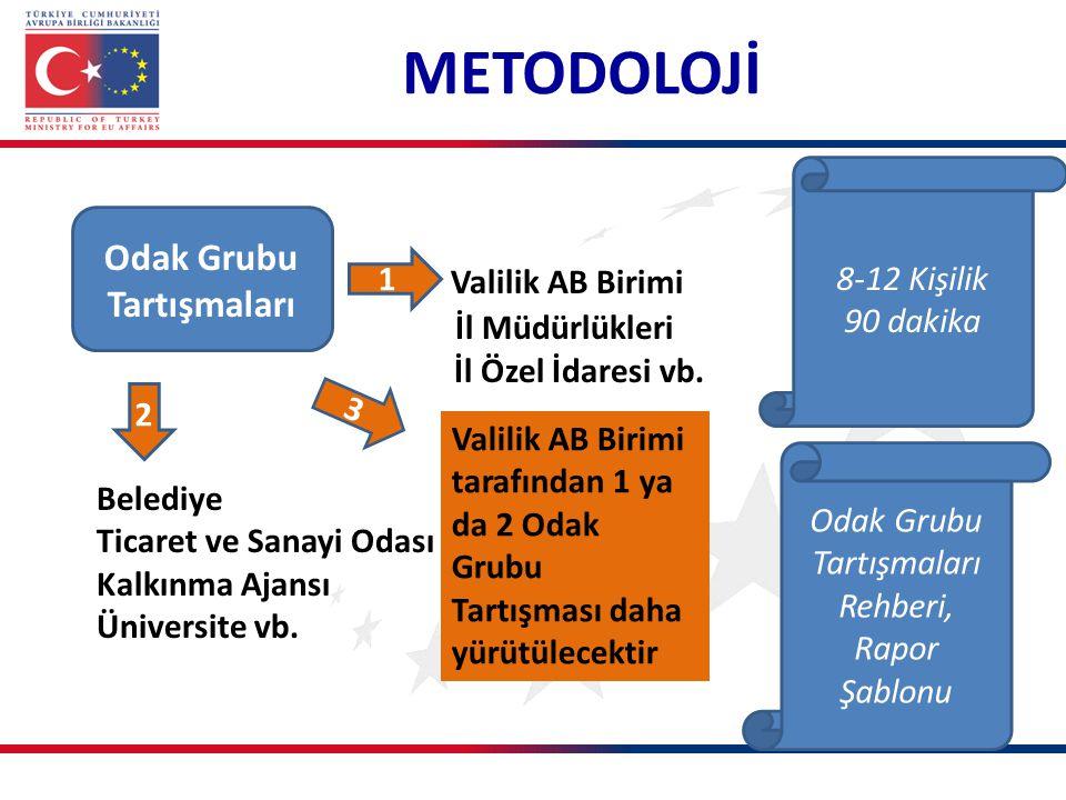 METODOLOJİ Mülakatlar 1 İl AB Daimi Temas Noktası Vali Yardımcısı ve İl Özel İdaresi, Belediye, Ticaret ve Sanayi Odası STK, vb.