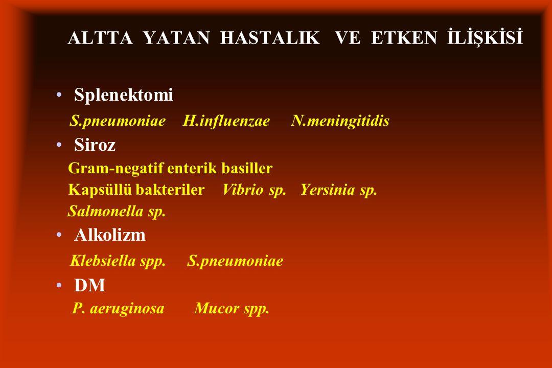 ALTTA YATAN HASTALIK VE ETKEN İLİŞKİSİ Splenektomi S.pneumoniae H.influenzae N.meningitidis Siroz Gram-negatif enterik basiller Kapsüllü bakteriler Vibrio sp.