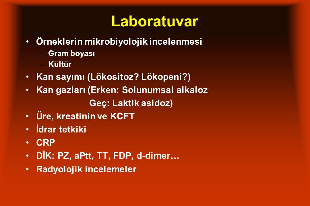 Laboratuvar Örneklerin mikrobiyolojik incelenmesi –Gram boyası –Kültür Kan sayımı (Lökositoz? Lökopeni?) Kan gazları (Erken: Solunumsal alkaloz Geç: L