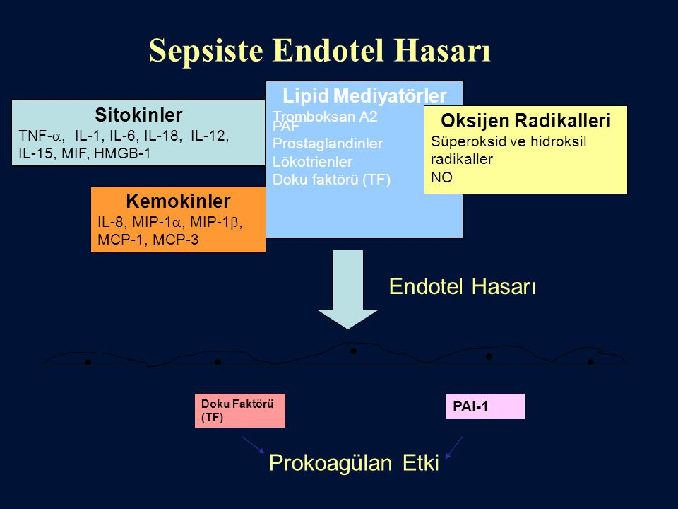 Sepsiste Endotel Hasarı Sitokinler TNF- , IL-1, IL-6, IL-18, IL-12, IL-15, MIF, HMGB-1 Lipid Mediyatörler Tromboksan A2 PAF Prostaglandinler Lökotrie