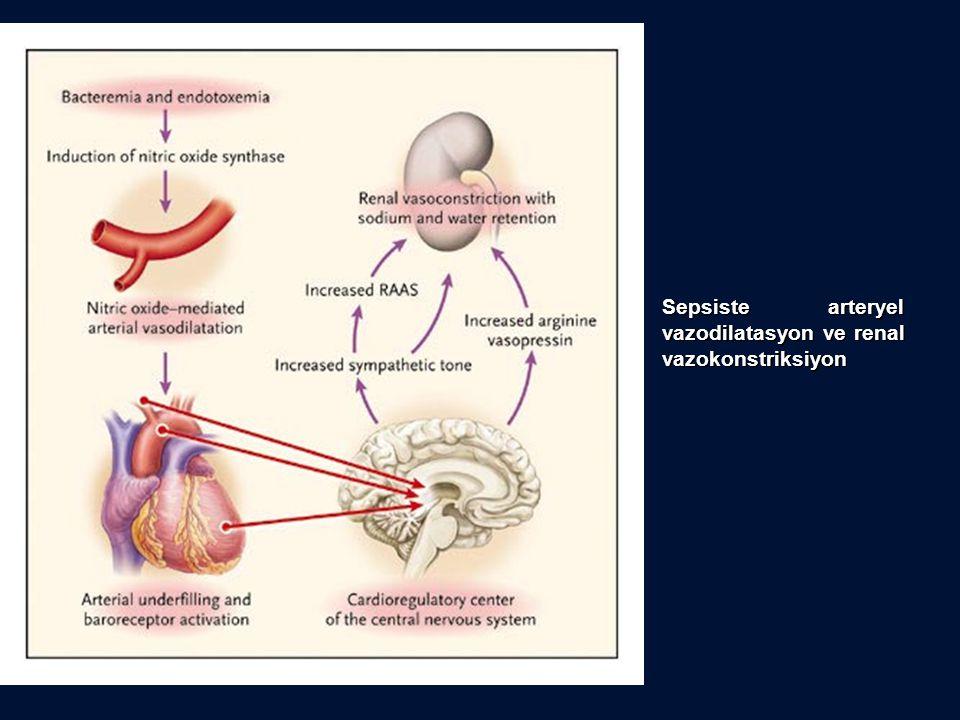 Sepsiste arteryel vazodilatasyon ve renal vazokonstriksiyon