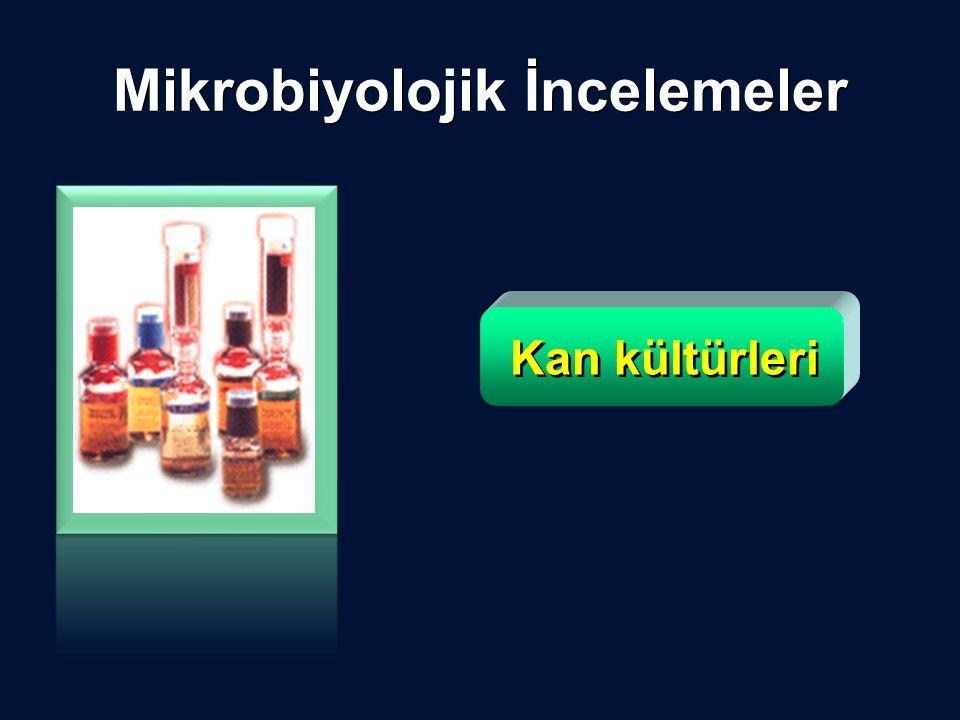Kan kültürleri Mikrobiyolojik İncelemeler