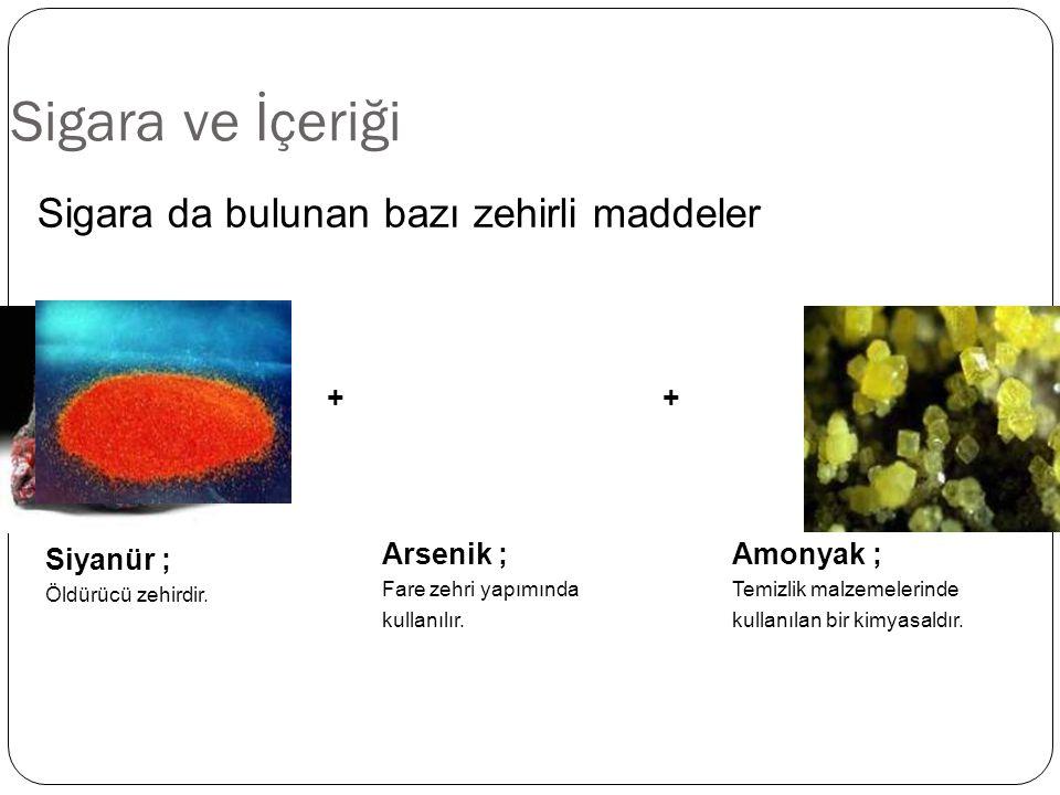 Sigara ve İçeriği Amonyak ; Temizlik malzemelerinde kullanılan bir kimyasaldır. Sigara da bulunan bazı zehirli maddeler Arsenik ; Fare zehri yapımında
