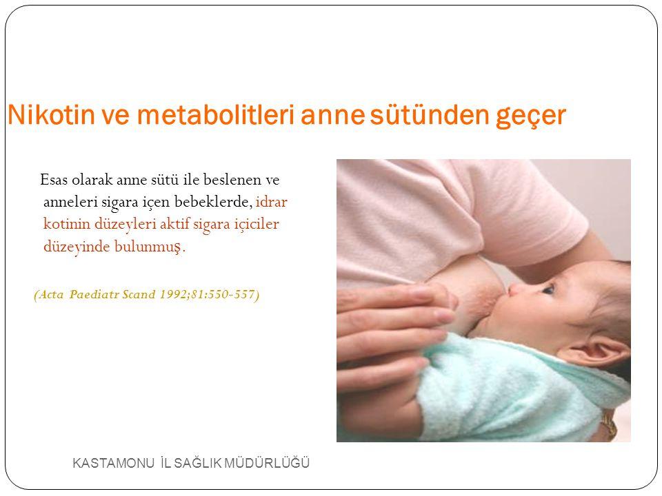KASTAMONU İL SAĞLIK MÜDÜRLÜĞÜ Nikotin ve metabolitleri anne sütünden geçer Esas olarak anne sütü ile beslenen ve anneleri sigara içen bebeklerde, idra