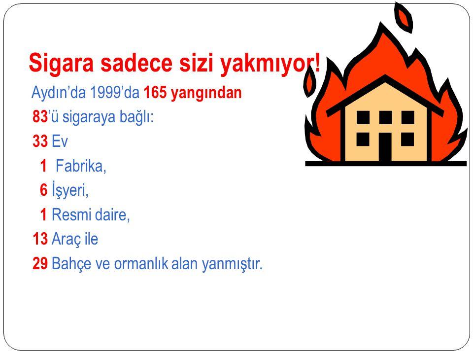 Sigara sadece sizi yakmıyor! Aydın'da 1999'da 165 yangından 83 'ü sigaraya bağlı: 33 Ev 1 Fabrika, 6 İşyeri, 1 Resmi daire, 13 Araç ile 29 Bahçe ve or