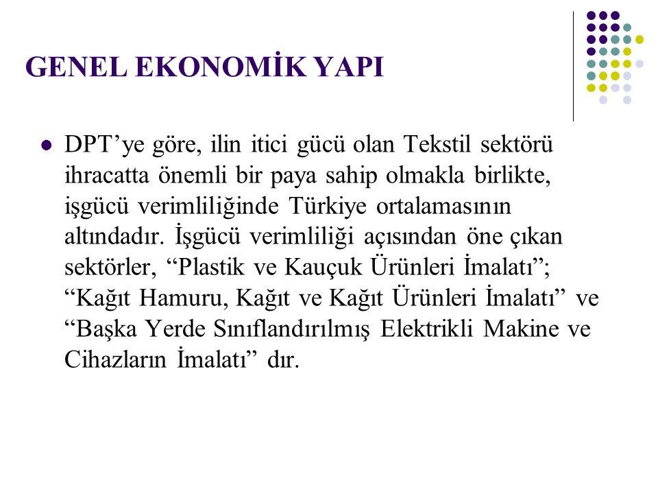 DPT'ye göre, ilin itici gücü olan Tekstil sektörü ihracatta önemli bir paya sahip olmakla birlikte, işgücü verimliliğinde Türkiye ortalamasının altınd