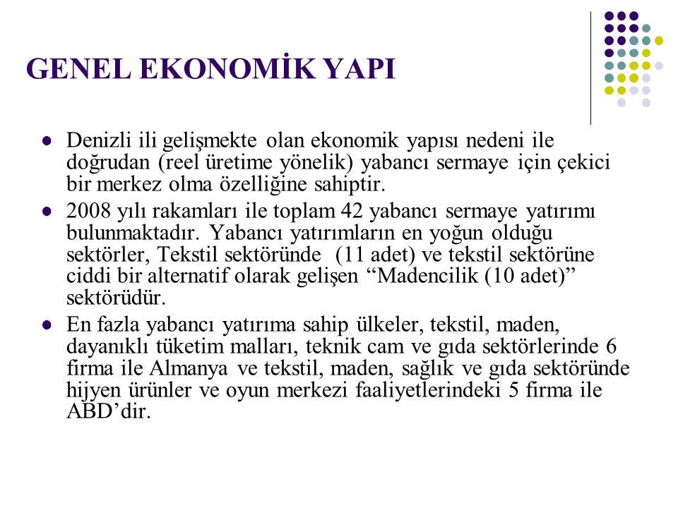 GENEL EKONOMİK YAPI Denizli ili gelişmekte olan ekonomik yapısı nedeni ile doğrudan (reel üretime yönelik) yabancı sermaye için çekici bir merkez olma